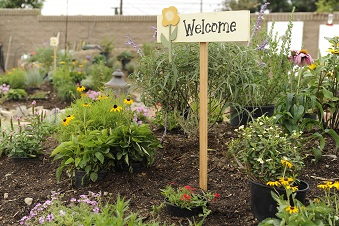 Garden with a small welcome sign